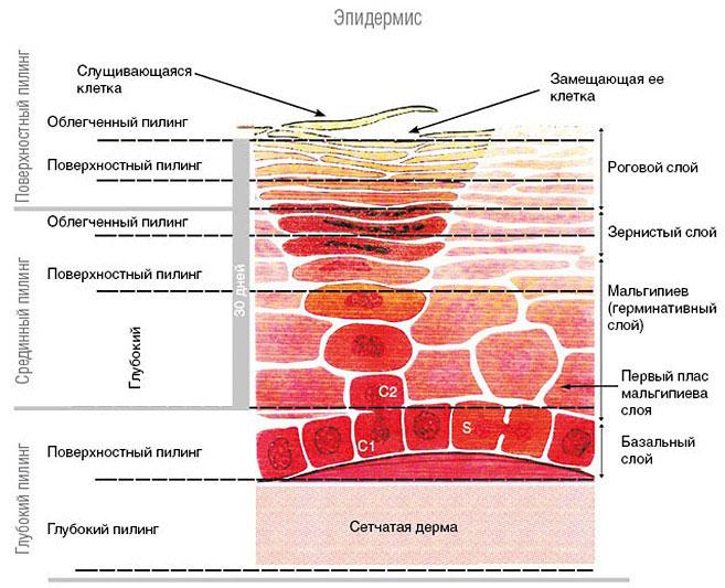 Схема глубины действия пилингов