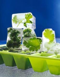 Кубики льда с отваром петрушки