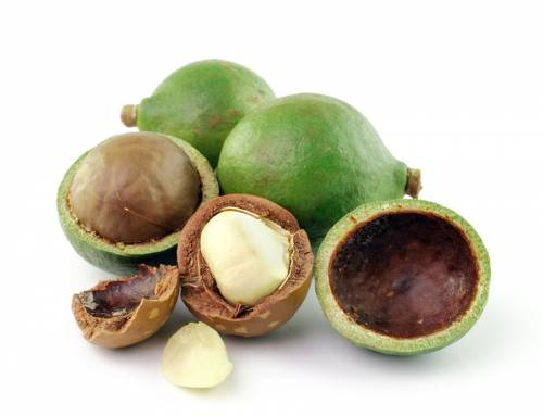 Орехи макадамии