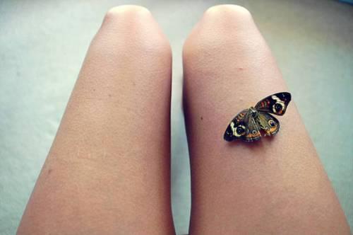 Бабочка на ноге