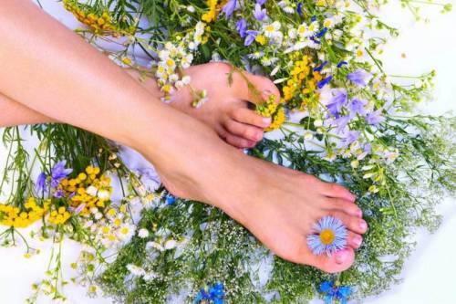 Лекарственные травы от потливости ног