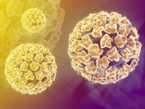 Прививка от впч при наличии вируса