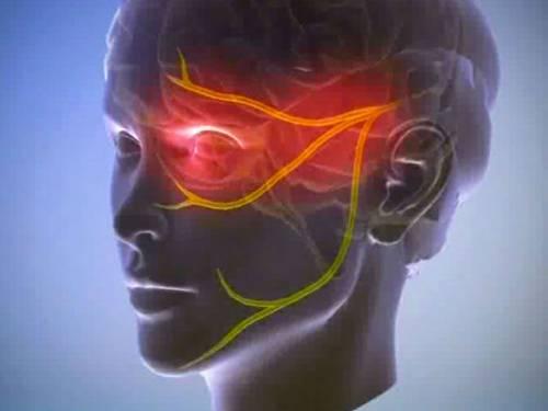Нервы в области лица