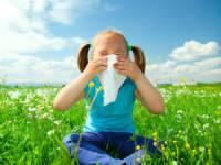 Аллергия у ребенка на пыльцу
